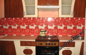 Однокомнатный дом №2, кухня